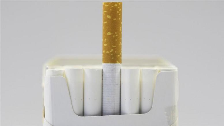 Sigara virüsün hücreye yapışmasını kolaylaştırıyor